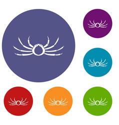 Japanese spider crab icons set vector