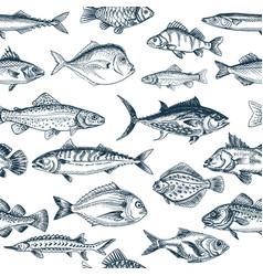 Sketch - fish pattern vector