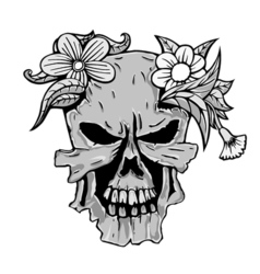 Skull with the succulent plants vector