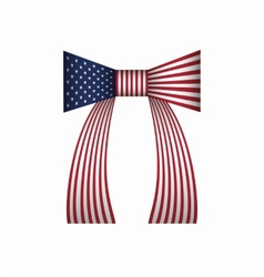 American flag bow vector