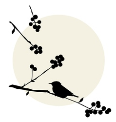 Birds on the branch Sunny day vector image vector image