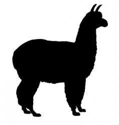 silhouette of alpaca vector image vector image