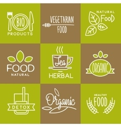 Label organic and natural badges vector