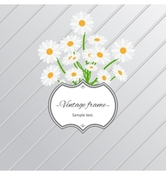 Daisy flowers and vintage label card vector image
