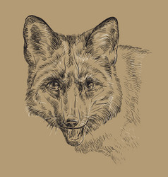 monochrome fox hand drawing portrait vector image vector image