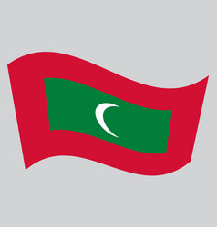 Flag of maldives waving on gray background vector