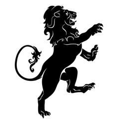 heraldic rampant lion vector image
