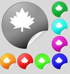 Maple leaf icon set of eight multi colored round vector