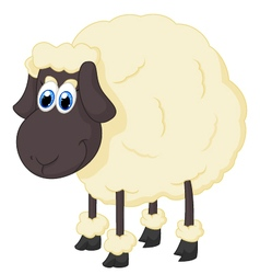 Cartoon adorable sheep vector image vector image