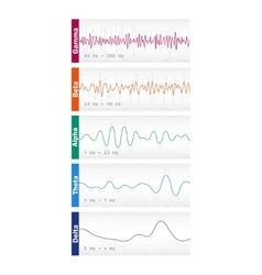Different brain waves vector
