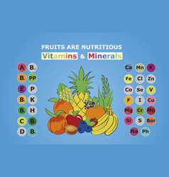 fruits are nutritious vector image vector image