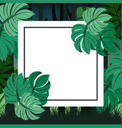 tropical landscape leaves palm card for text blank vector image