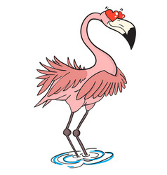 cartoon image of flamingo in love vector image