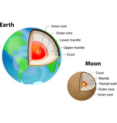 Earth and Moon internal structure vector image