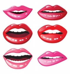 glossy lips vector image