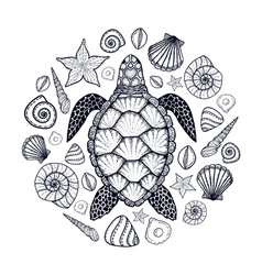 Sea turtle and shells in line art style Hand drawn vector image