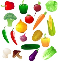 vegetable vector image