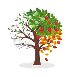 Seasons tree vector image