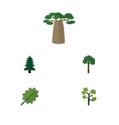 flat icon nature set of baobab garden park and vector image