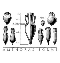 Amphora forms set vector