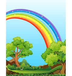 Rainbow and field vector