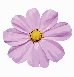 Violet flower vector image