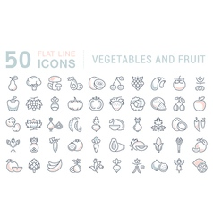 Vegetables and fruit line icons 4 vector
