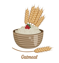 Oatmeal isolated on white background vector