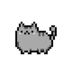 Cute kitten domestic pet pixel art - isolated vector