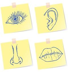 Senses sketches vector image