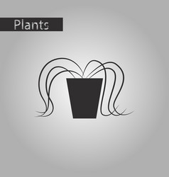 Black and white style icon plant in a pot vector