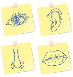 Senses sketches vector image