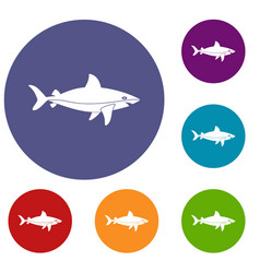 Shark fish icons set vector