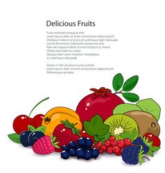 Summer tropical fruits and berries isolated vector