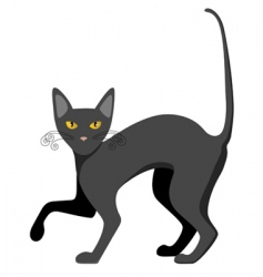 Cat illustration vector