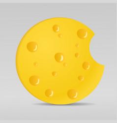circle cheese vector image