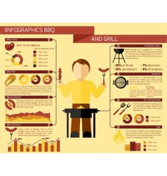 Bbq Grill Infographics vector image