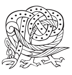 celtic design with knotted lines of a bird vector image vector image