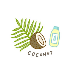 coconut superfood isolated on white vector image vector image