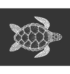 Sea turtle in line art style hand drawn set of vector