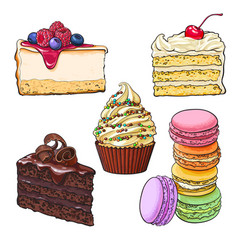 Set of desserts - cupcake chocolate and vanilla vector