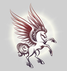 sketched pegasus in light round vector image