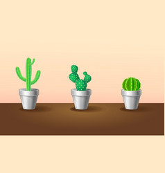 Beautiful exotic plants collection vector