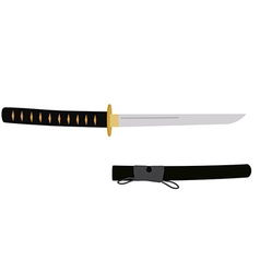 Japanese tanto sword vector