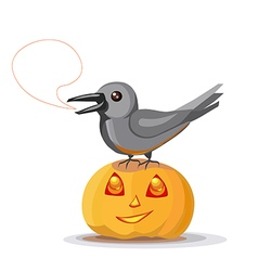 Crow on pumpkin vector