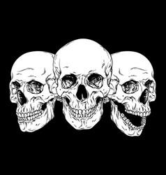 human skulls hand drawn line art set vector image vector image