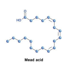 Mead acid molecule vector