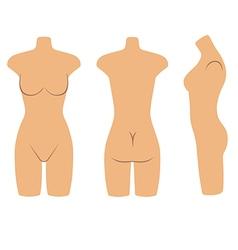 Woman mannequin torso flat style vector