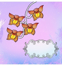 Card with orchid flowers in vector image