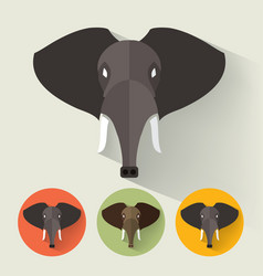 elephant portrait with flat design vector image